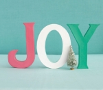 joy-centerpiece-ictcrop_365