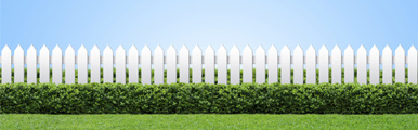 OCT_Fence