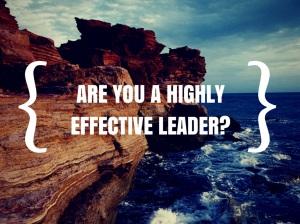 highlyeffectiveleader